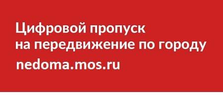 Пропуск на время карантина в Москве и Московской области