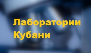 Лаборатории Кубани: как войти в кабинет, получение результатов анализов